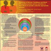 Dilemmas of African, Caribbean and Black HIV-positive women service providers in their efforts to provide culturally appropriate services